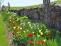 formal-gardens-0a-lores