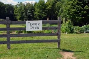teachinggarden_for web.jpg